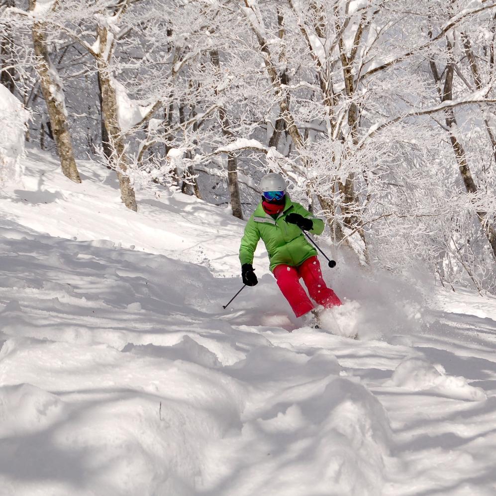 heliskiing pure brandz pure snow