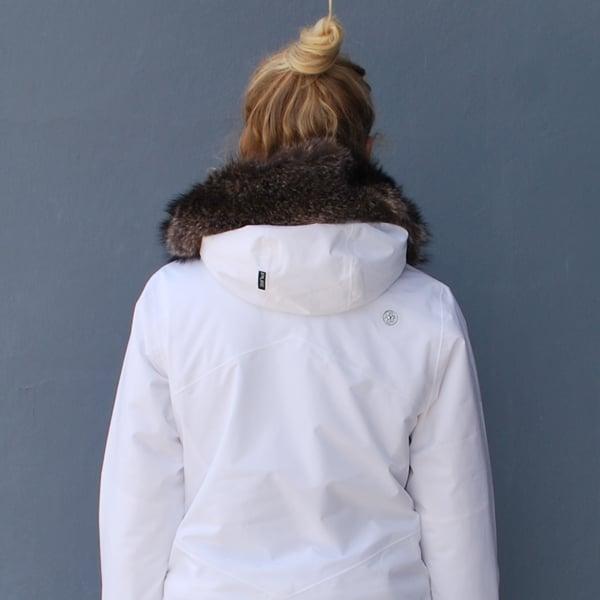 white-back.jpg