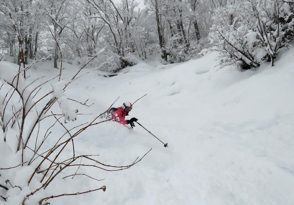 30-40cm of wettish dump overnight that was much needed for a base that's lacking somewhat in the off-piste areas. Seki Onsen is one of the Myoko ski areas... lots of sticks poking through!