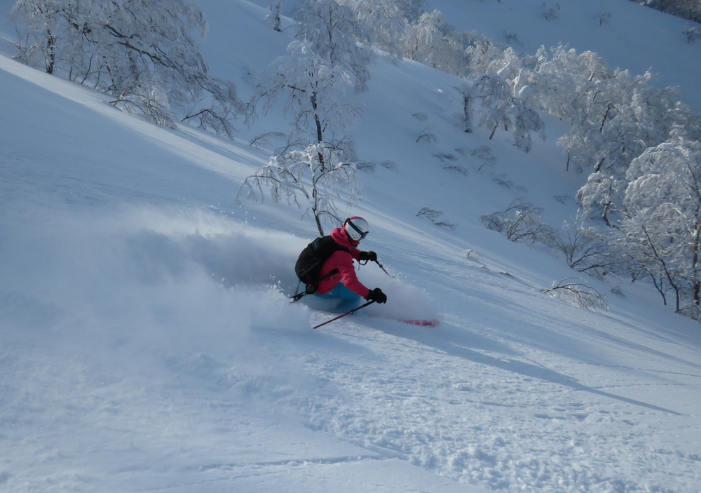 5 Heli skiing.jpg