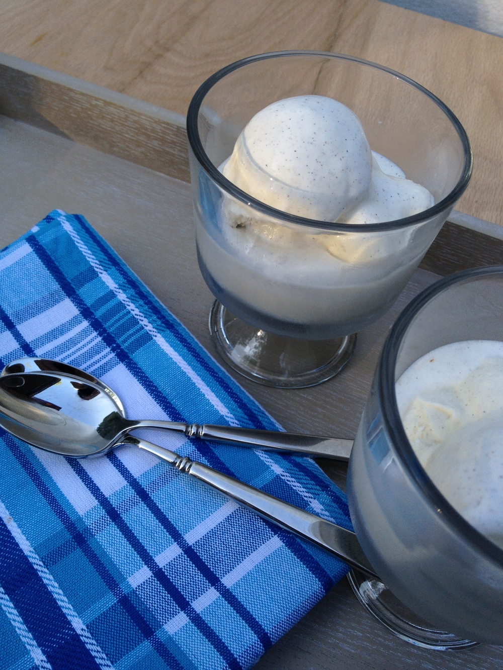 Mom's Homemade Vanilla Ice Cream Martie Duncan
