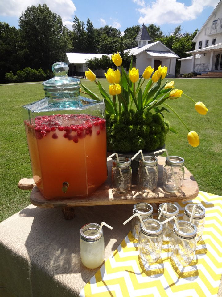 Change up your lemonade recipe for this delicious Raspberry Vanilla Lemonade... incredible! And with some hi-test mix-ins, you can craft a specialty cocktail everyone will love.