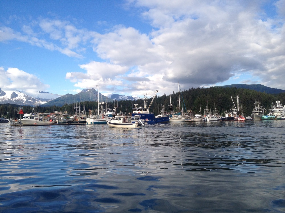 One of the many picturesque fishing boat harbors in Juneau- they all look like a painting.