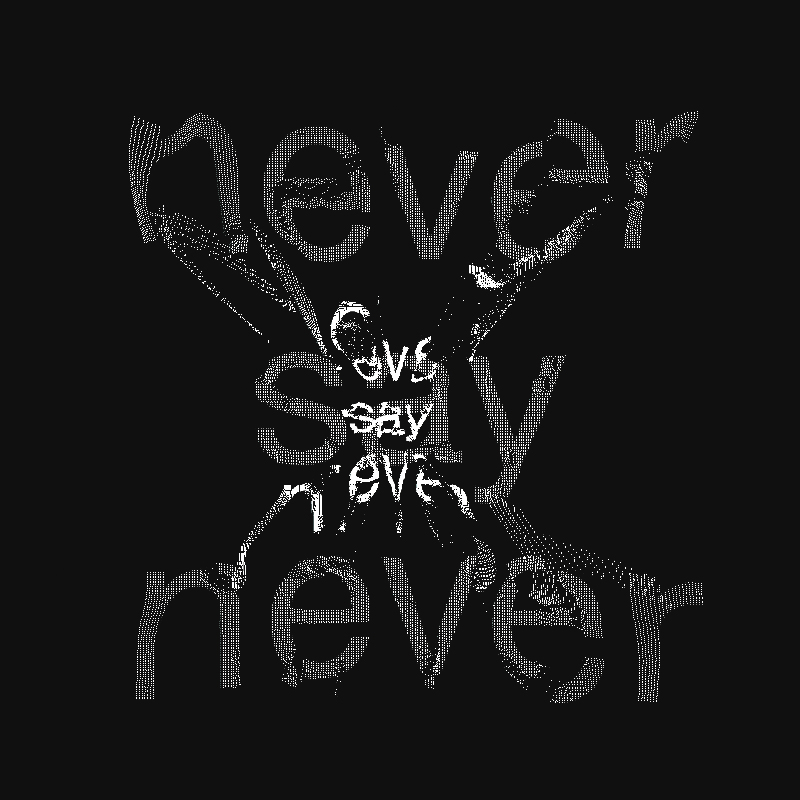neversaynever.insta.jpg