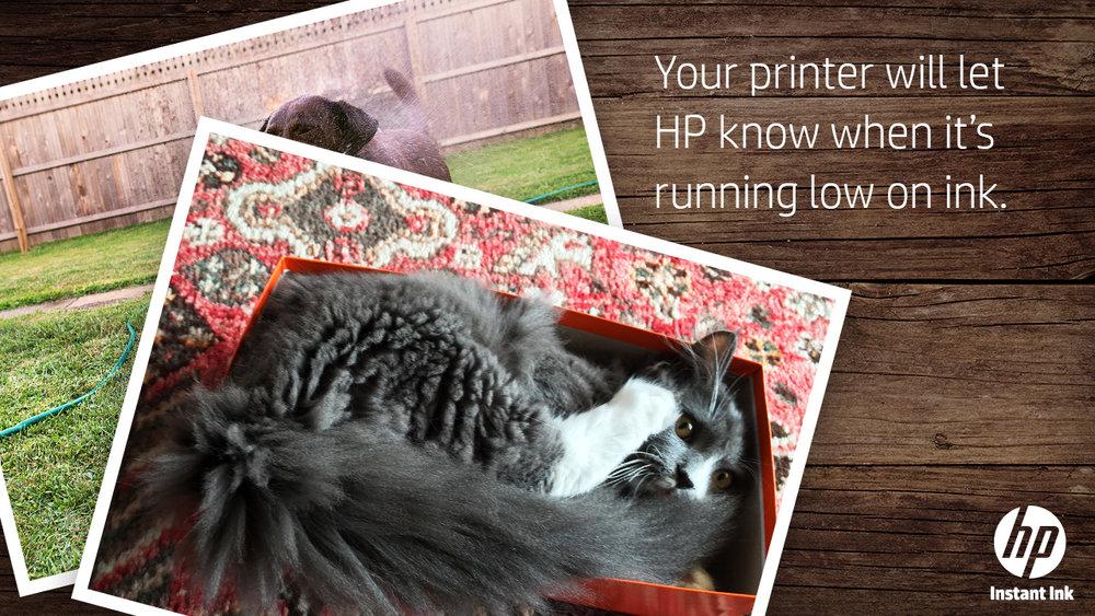 HP_Petastrophe_0005_Layer Comp 5.jpg