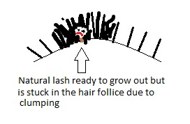 Damaged Lashes