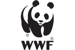 final logo wwf.jpg