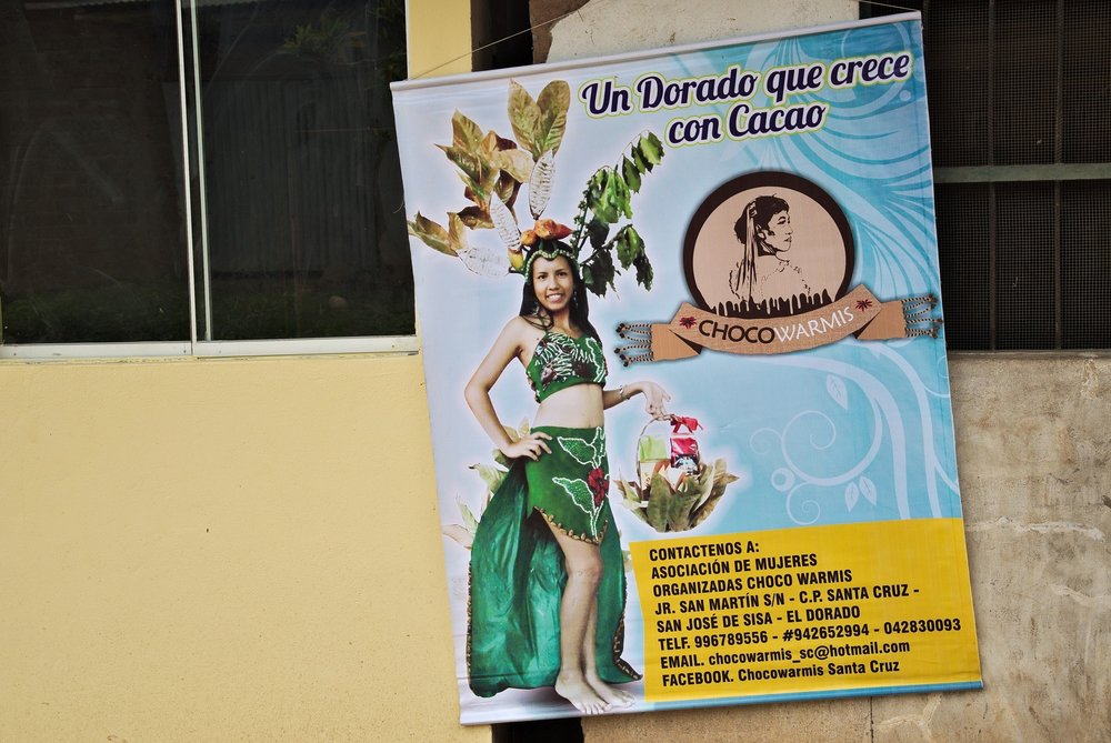 Fronts of two houses in a  communidad nativa  in the district of El Dorado, San Martín. The poster is of a government-funded project for local cocoa transformation. The left building has been constructed by the public housing project  techo propio .