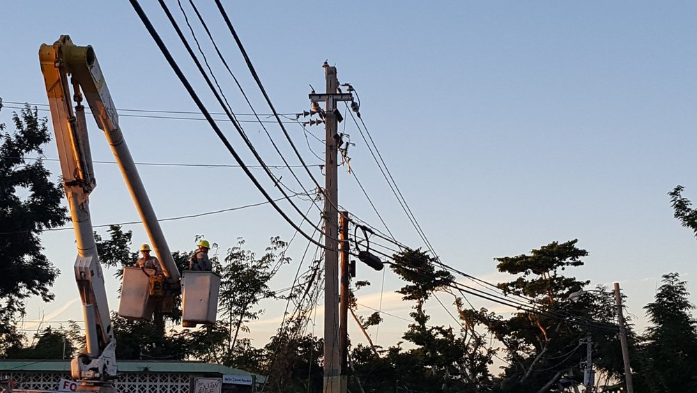 PHOTO CREDIT: Lily Bui; PREPA authorities repair transmission lines in Rincon, Puerto Rico