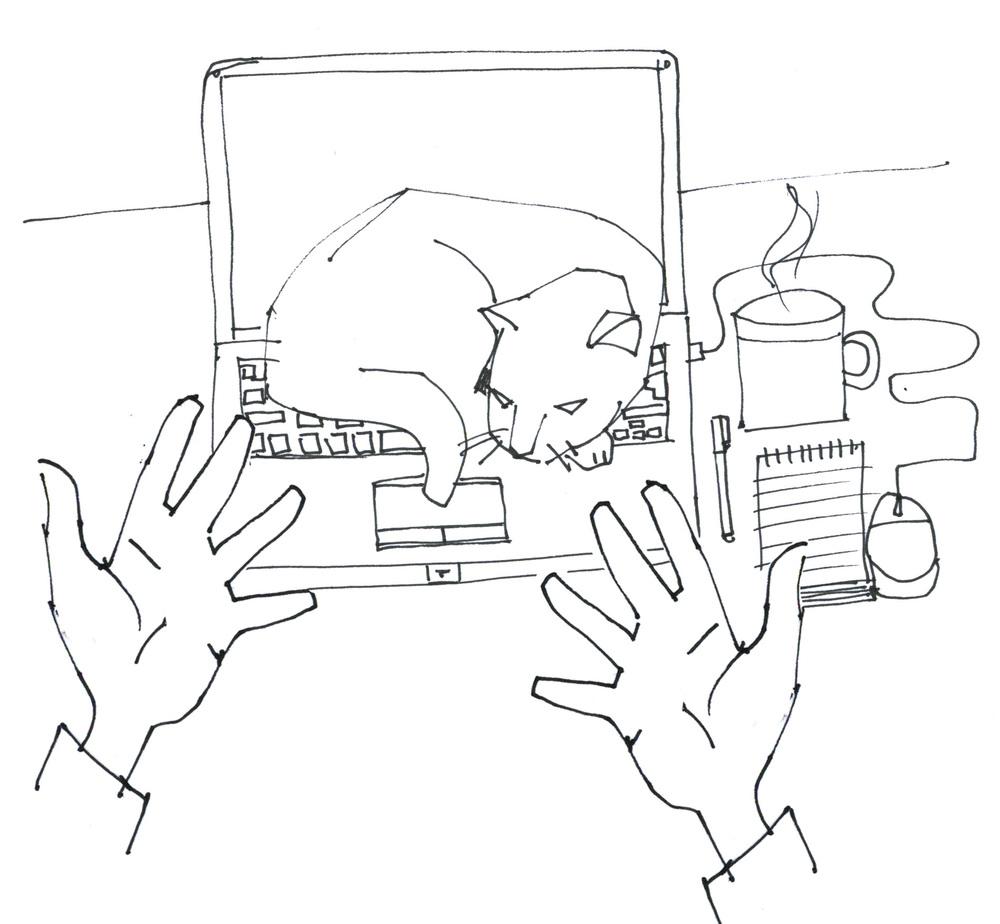CAtLaptop.jpg