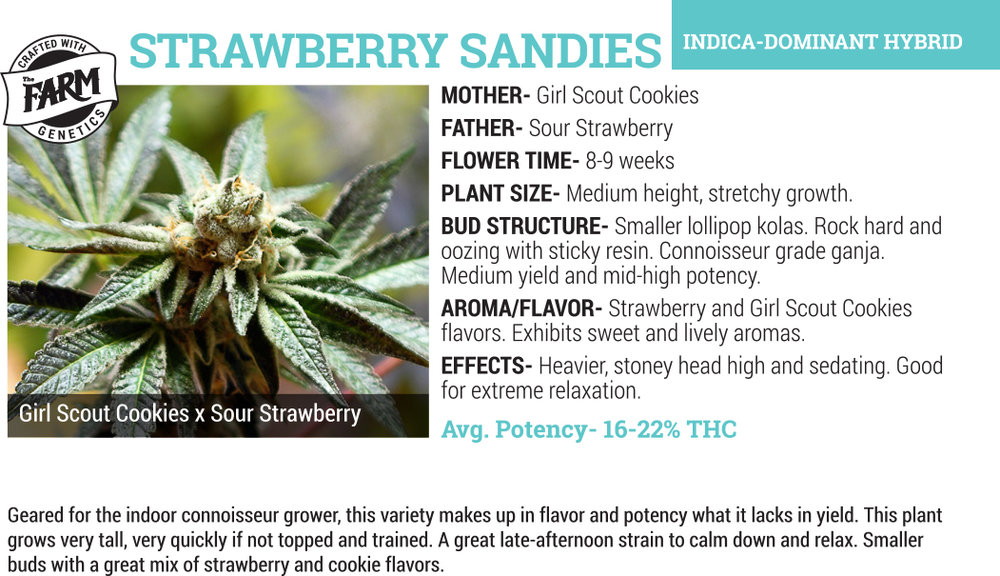 strawberry sandies cannabis flower for sale