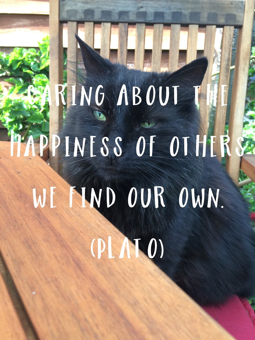 """Caring about the happiness of others, we find our own."" (Plato)"