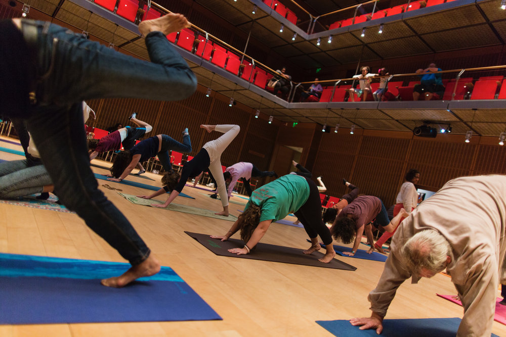 Candid image taken during  Marlene Boyette' s  Yoga Movement Experience workshop  at  The Isabella Stewart Gardner Museum .  Photo Credit : Lauren Miller