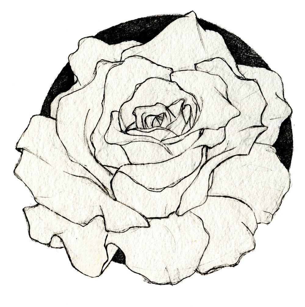 sketchbook010web.jpg