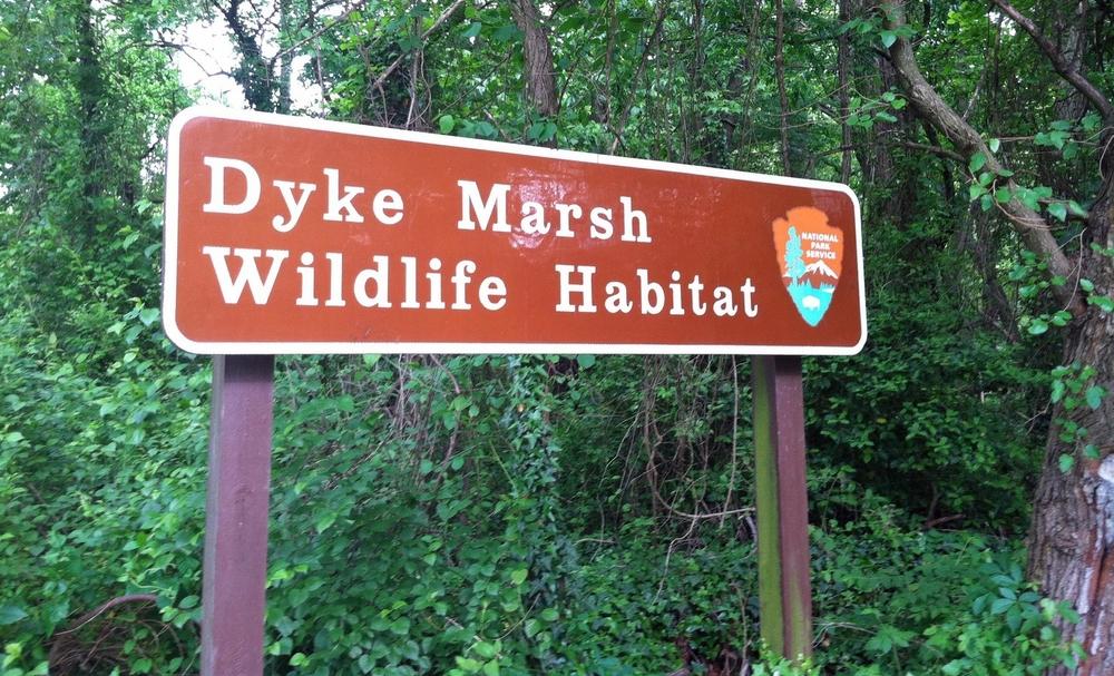 Dyke Marsh sign