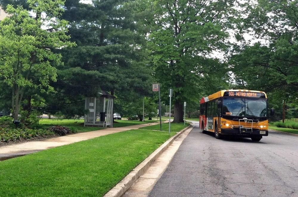101 bus