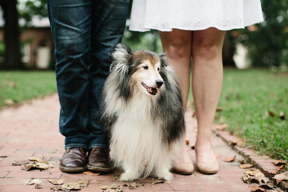 UNC. dog. engagement photo inspiration. north carolina photographer.JPG