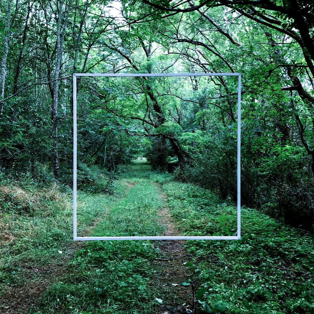 Filtering Reality #1 AER Art for the Environment International Artist Residency wood, nylon line, white paint, dimensions variable