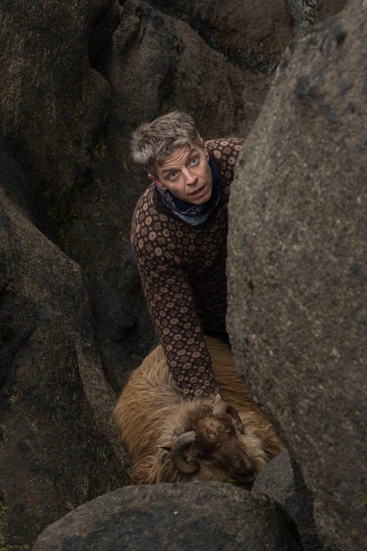 shepherds-5.jpg