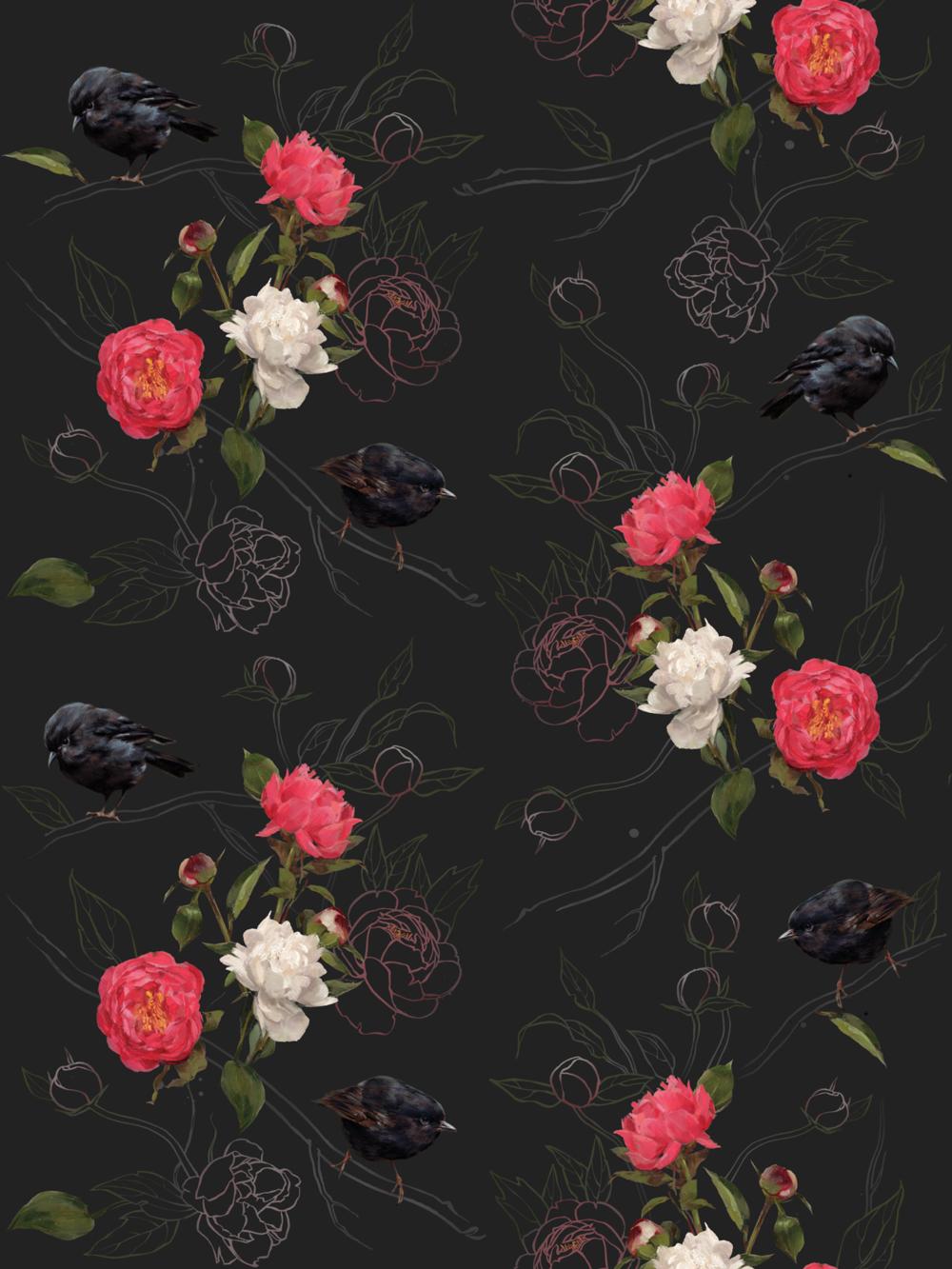 HALF FULL  Black Robin I Deep Bloom