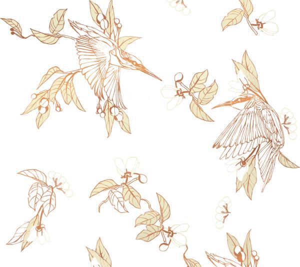 HALF FULL  Kingfisher I White