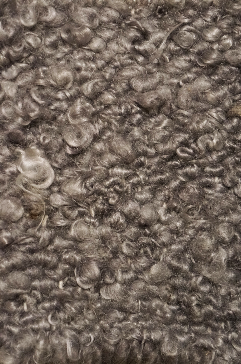 CURLY MOHAIR I GREY