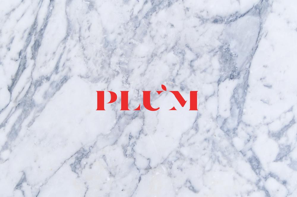 Plum_Shot_Logo.png