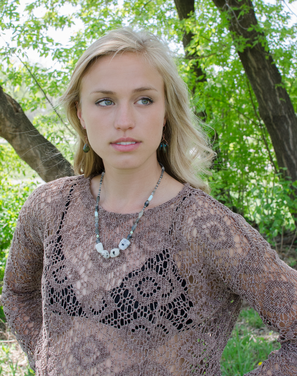 Brown-Lace-Long-Sleeve-Zara-2.jpg