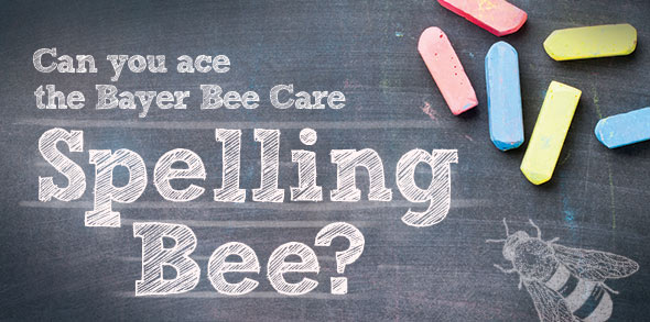 bayer-bee-care-spelling-bee-banner.jpg