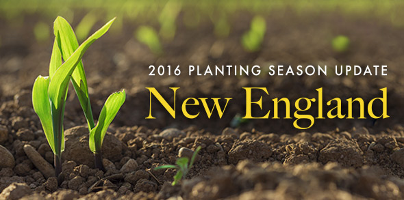 2016-season-growing-update-New-England.jpg