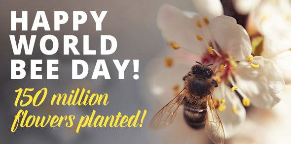 happy-world-bee-day.jpg