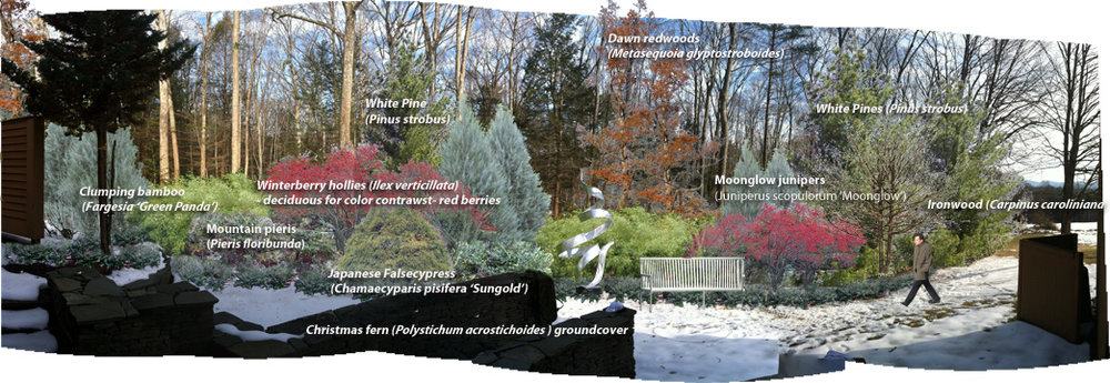Photoshop rendering of the proposed tree-and-shrub screen.