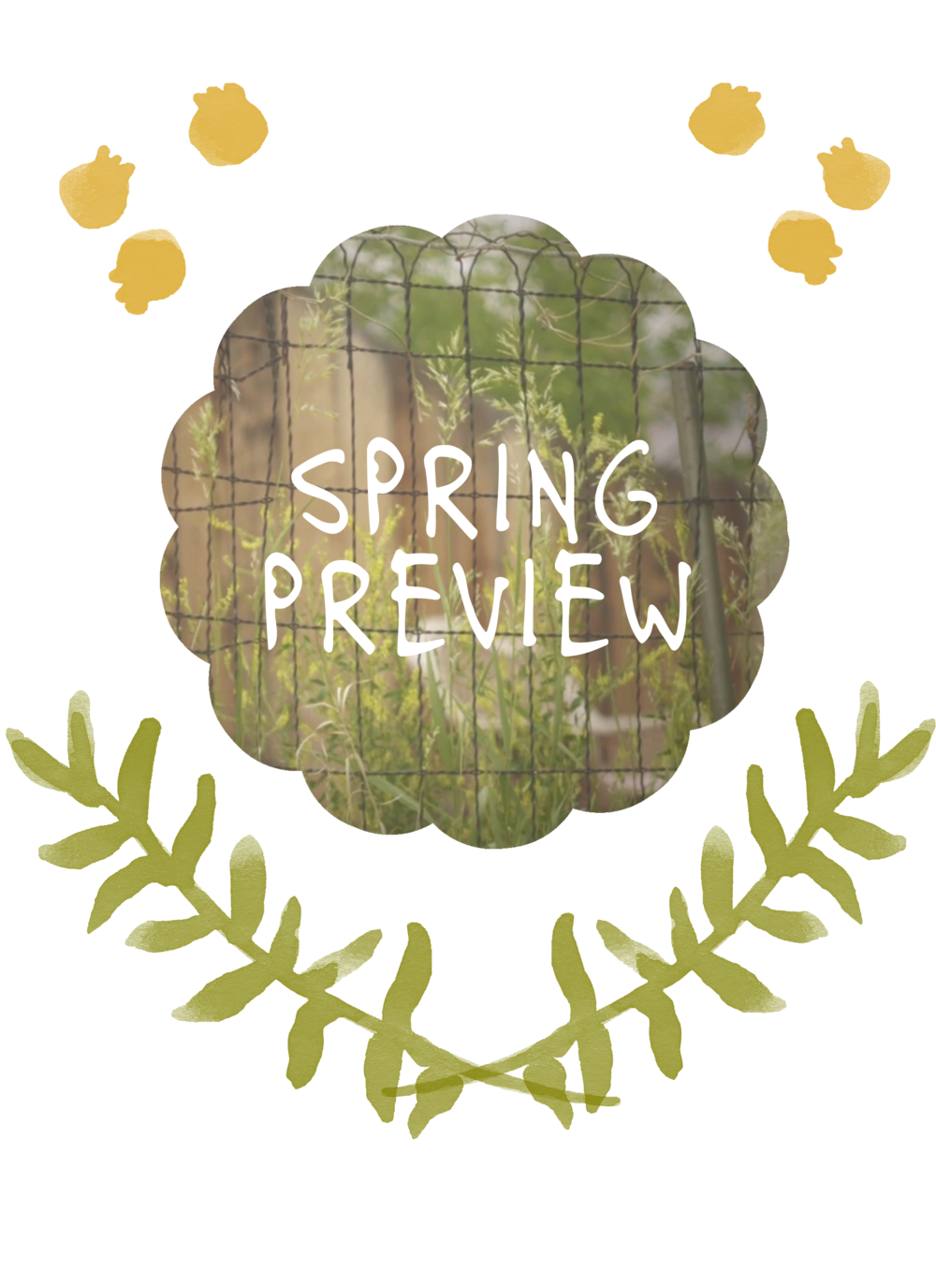 springpreview copy.png