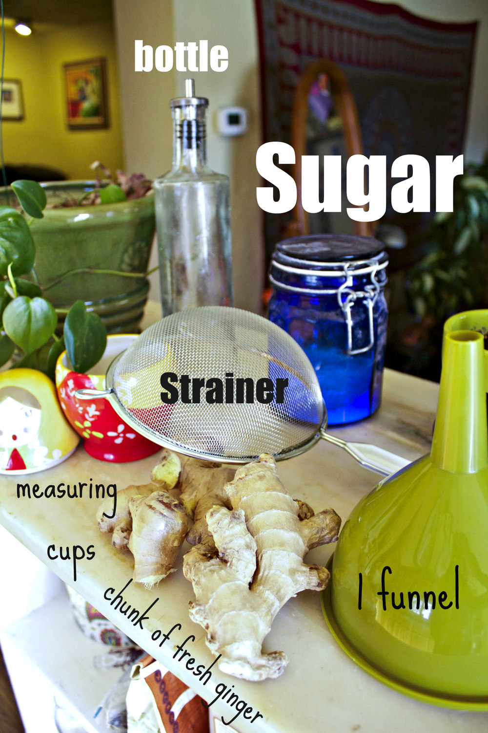 Things you will need. A funnel, fresh ginger, measuring cups, sugar, water, a pot, a container like bottle