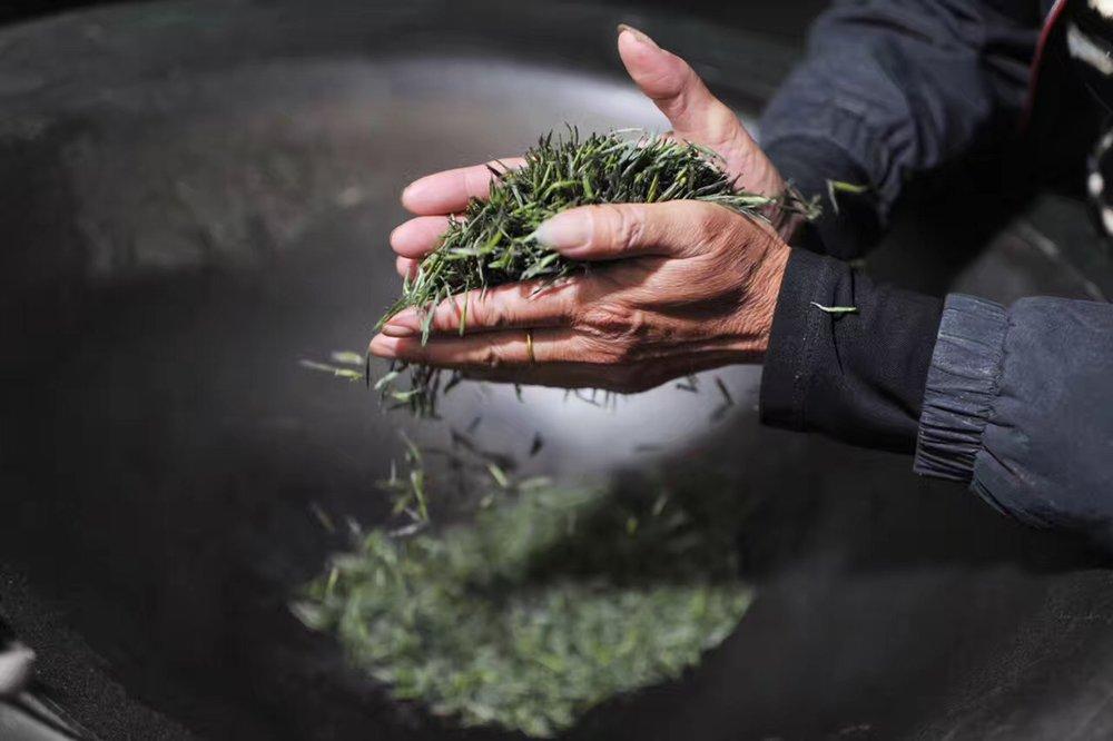 Firing Lushan green tea, Jiangxi Province