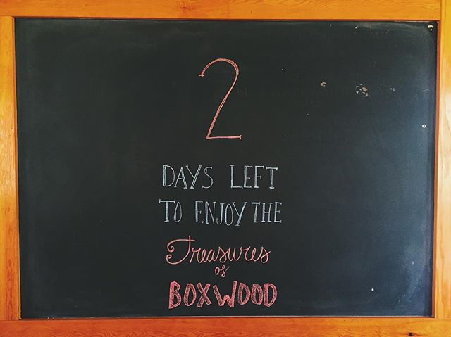 Attention, attention! 2 days left to enjoy our darling Boxwood. Patio's open, sun is shining and we are waiting for you! #byebyeboxy #yycpatio #yyceats #countdown