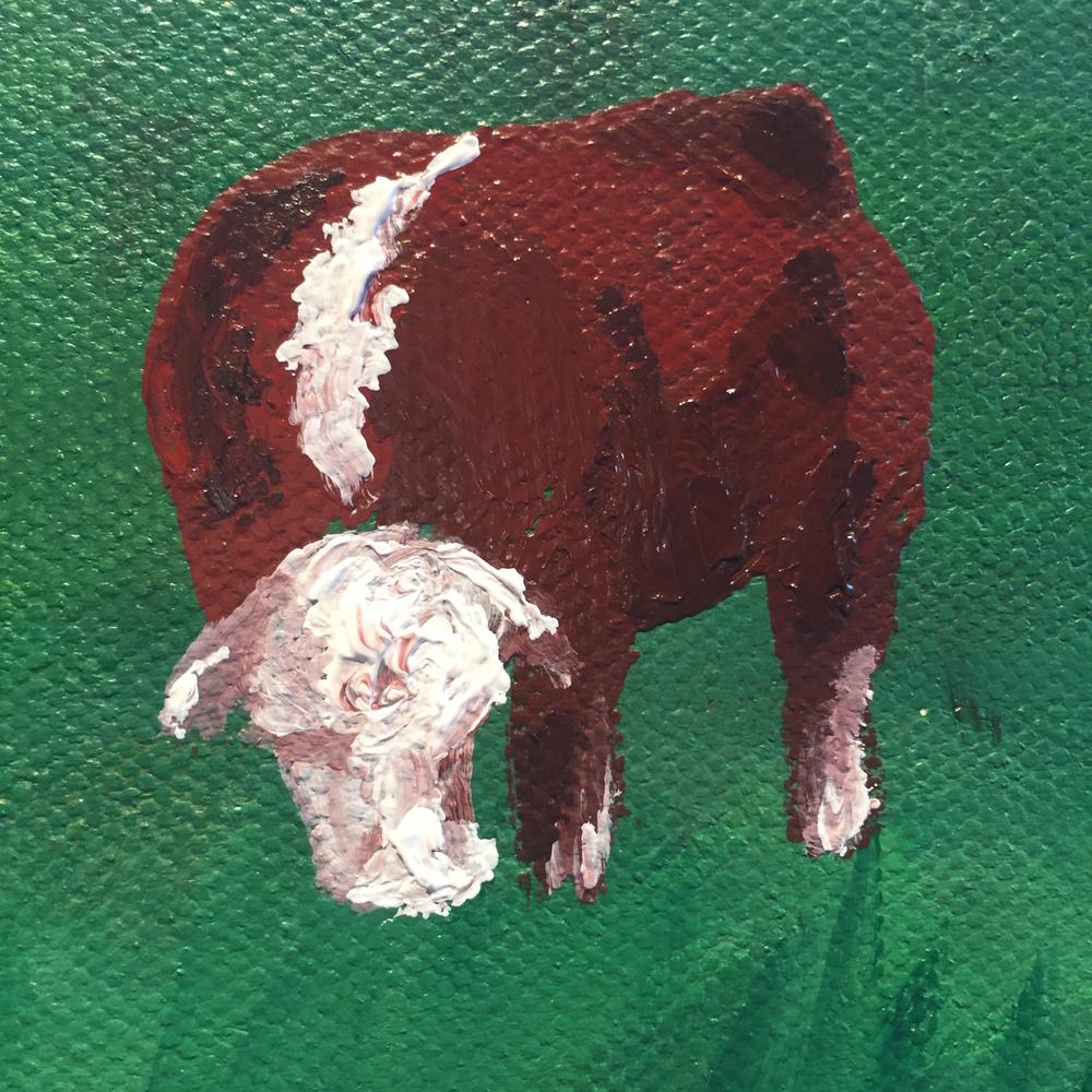 Single Bull.jpg