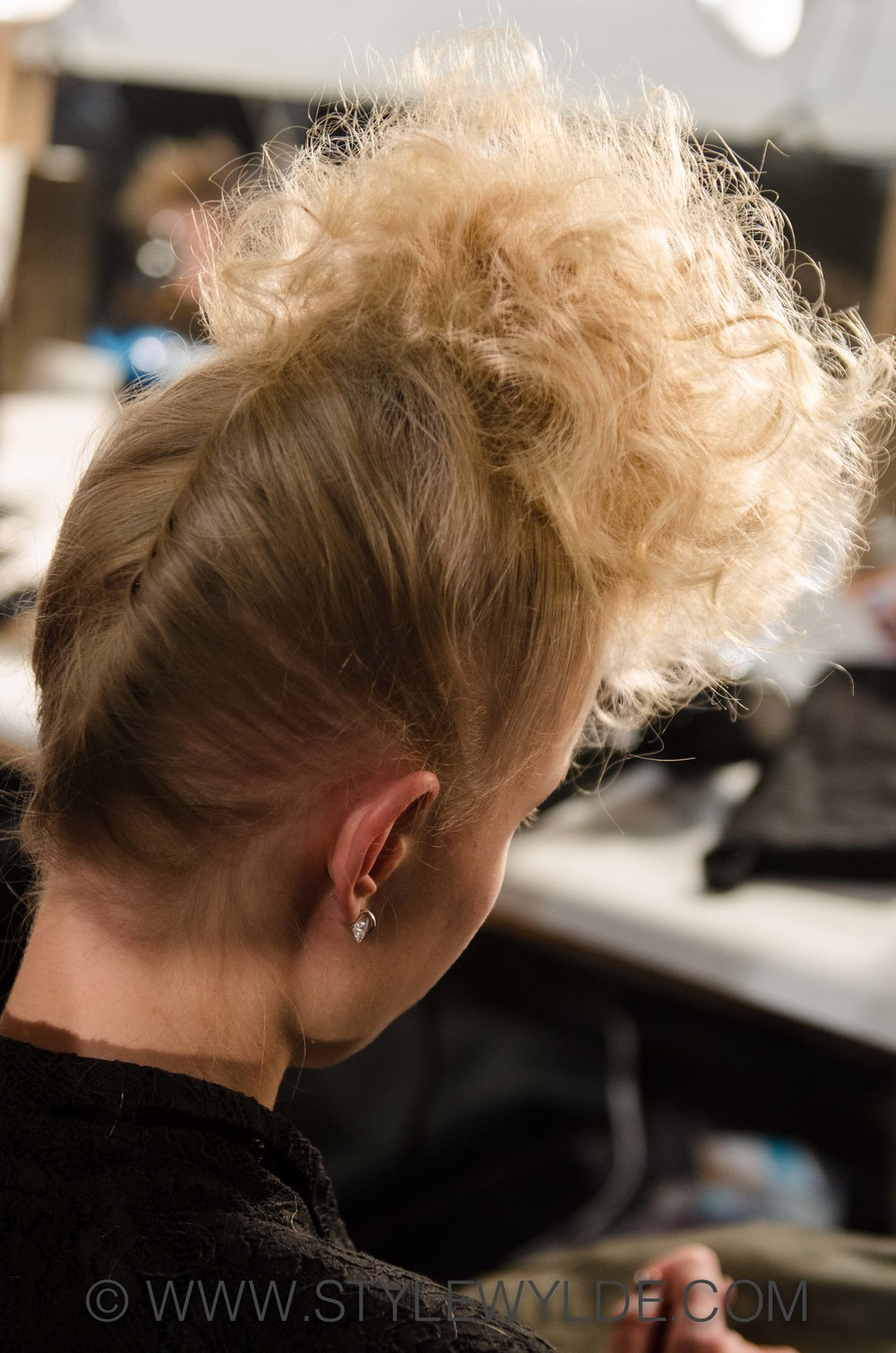 Stylewylde_KatyaLeonovich_Hair_FW2014_CA 1 of 1.jpg