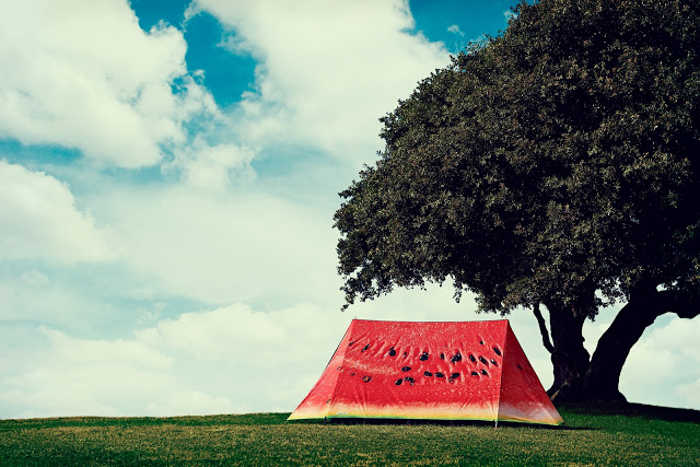 Photo credit: FieldCandy