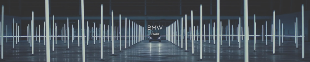 "BMW ""SNAKE"""