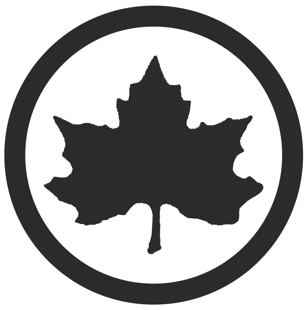 just leaf_bw.jpg