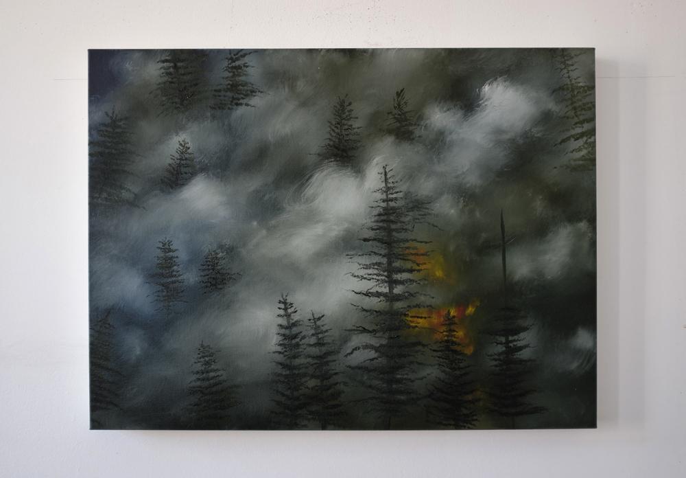 Deforestation 3, 2016