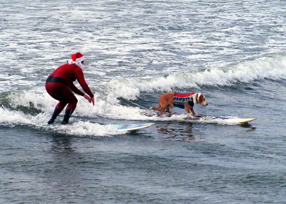 Howdy Doody, the dude I was named after, the surf bassador, Ambassador of Dog Beach, snakes Santa's wave in Ocean Beach, CA