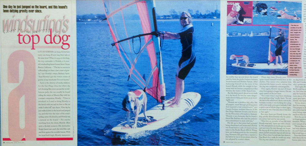 "Howdy Doody, first generation of our Surf Dog Diaries family - named ""Windsurfing's Top Dog"" by PetLife Magazine back in the day, in the early 90's"