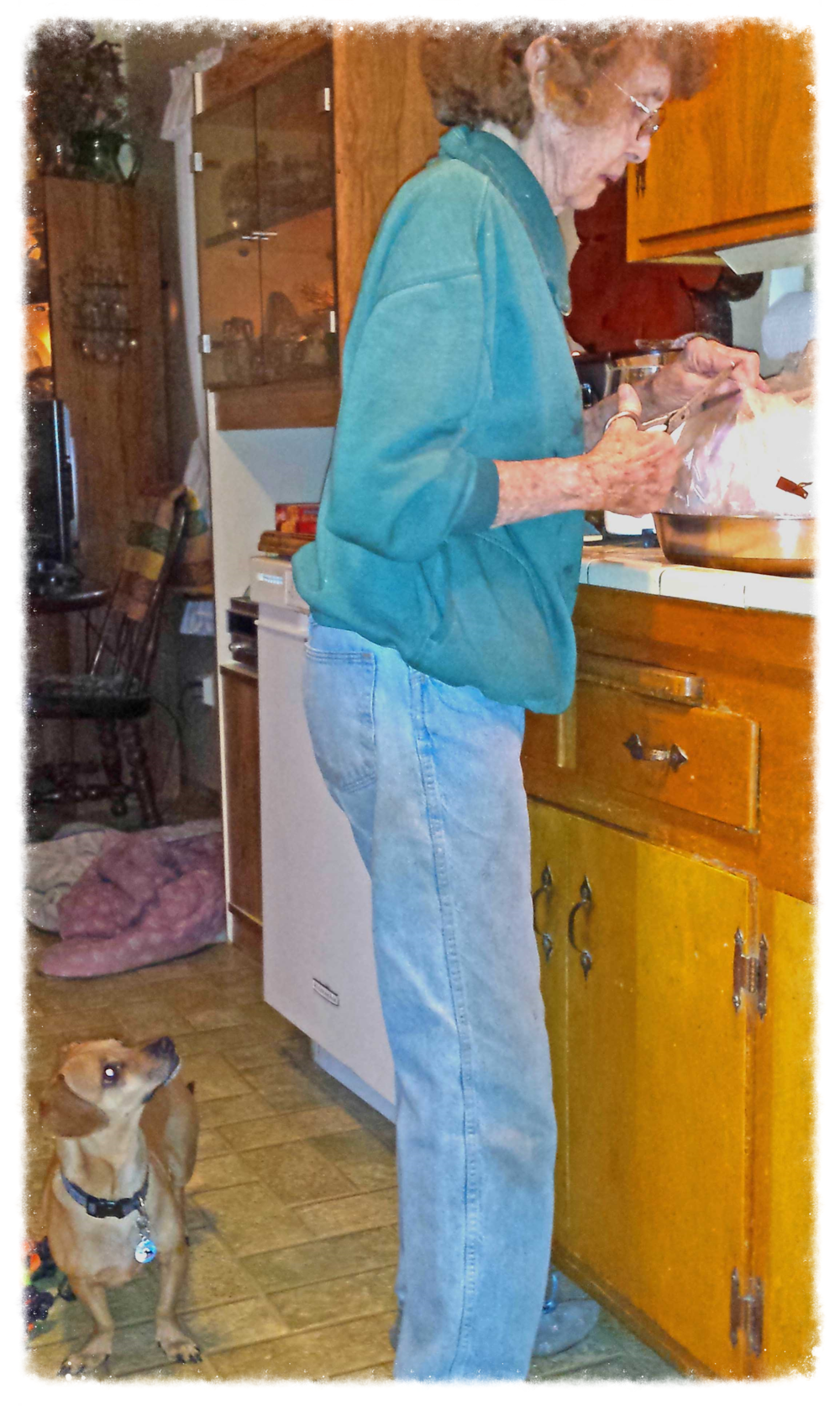 Grandma Ayers and her grand dog Doodle on Thanksgiving Day