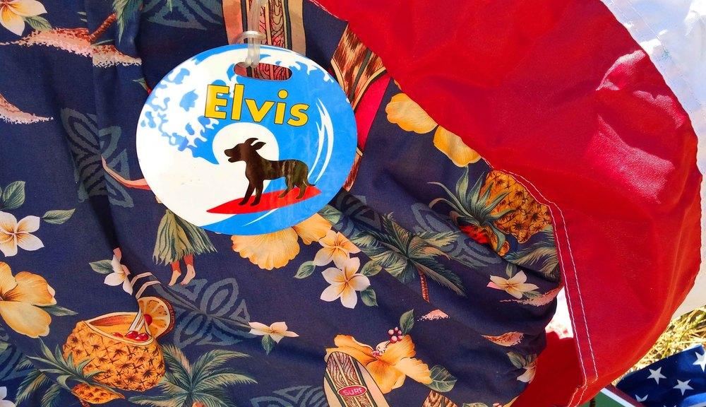 We miss ELvis_edited-1.jpg