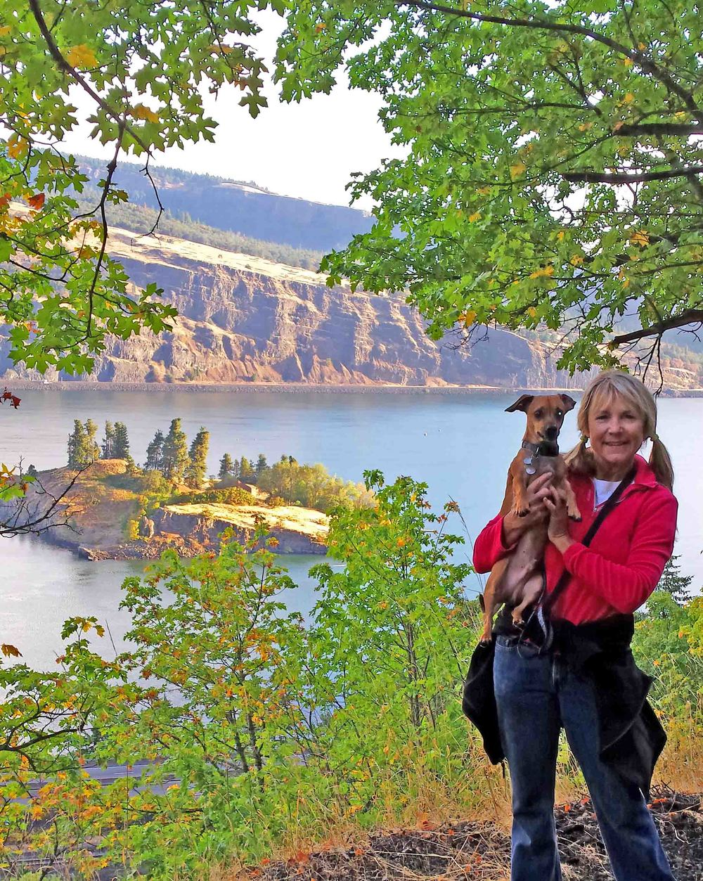 The DogDiary.org team lives next to the Mosier Twin Tunnels trail - a section of the Historic Columbia River Highway that is closed to vehicles. Amazing dog walks here! Pictured: Doxie Doodle, writer dog with dog mom Barb Ayers.