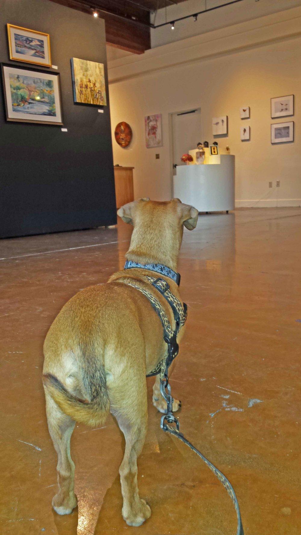 dogs appreciate art.jpg