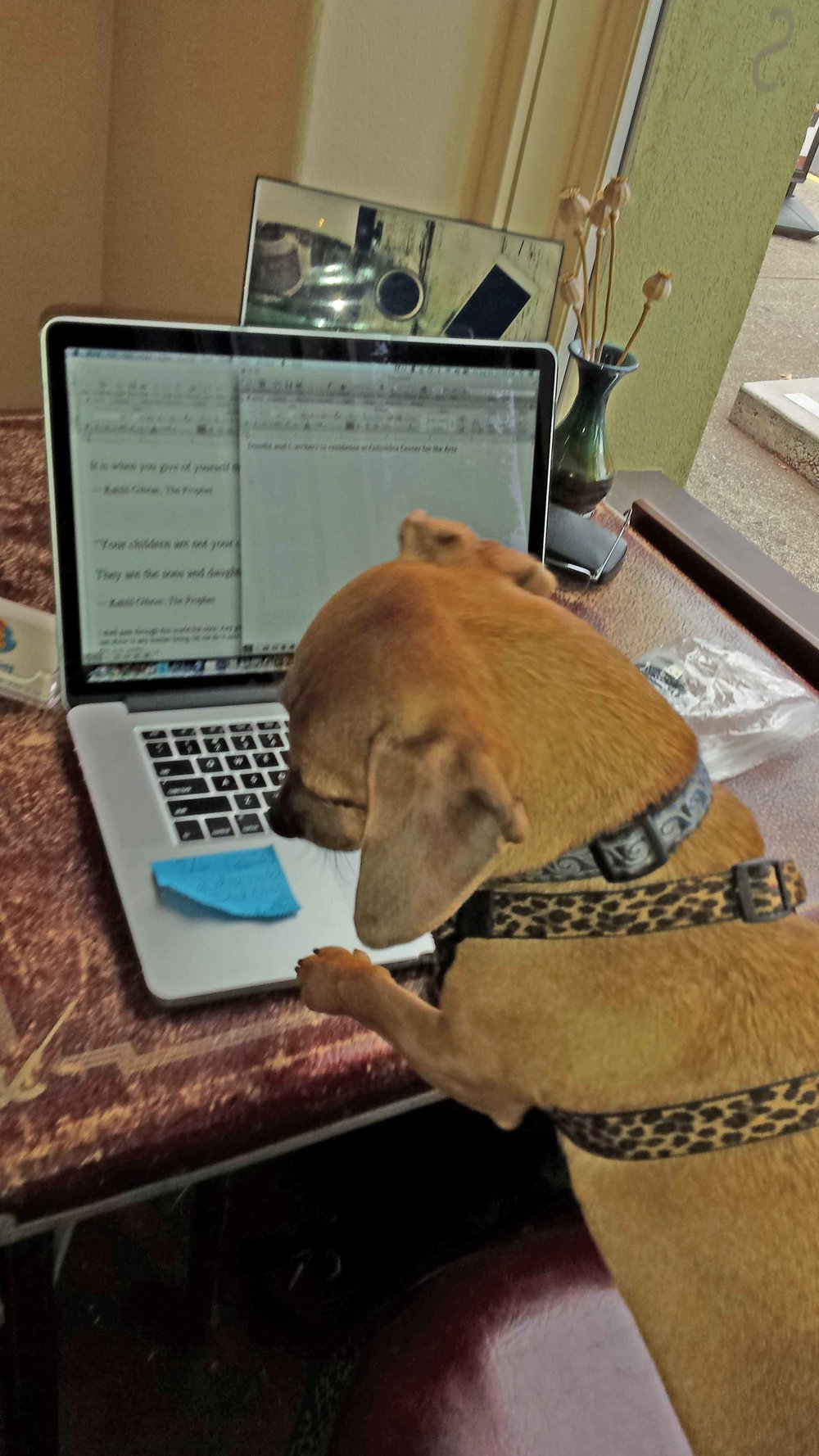 starting to write.jpg