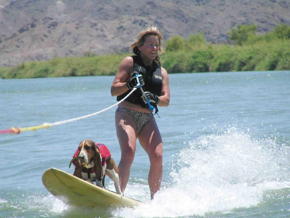Colorado River ski trips are how it first began with Elvis and me.                                               Photo: (c) Barb Ayers, www.DogDiary.org